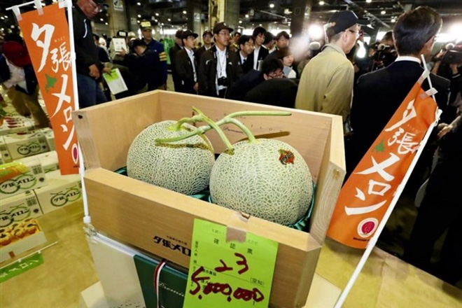 Hóa ra đây là cách biến cá ngừ hay quả dưa và số nông, thủy hải sản đắt như vàng ở Nhật - Ảnh 2.