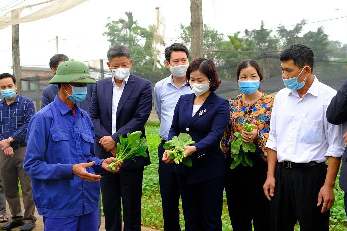 5 huyện Hà Nội sắp lên quận là những huyện nào, đều được Thủ tướng công nhận huyện nông thôn mới?  - Ảnh 1.