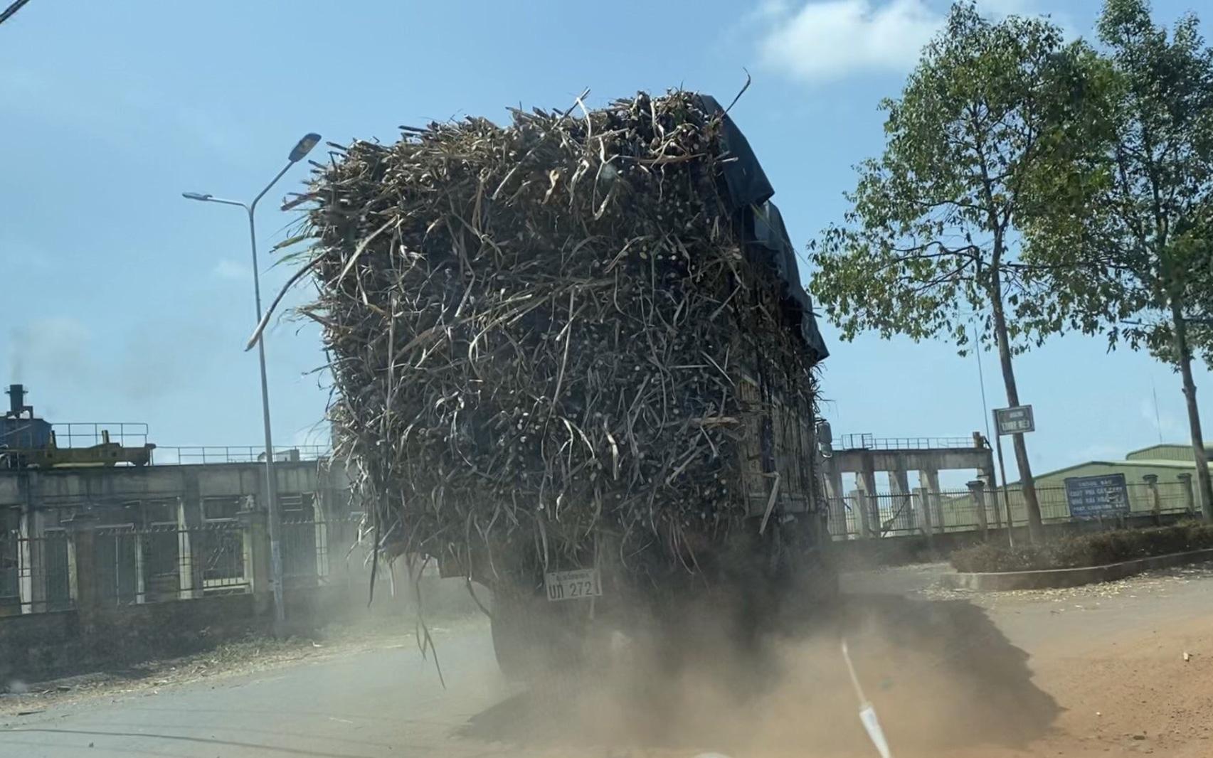 Đắk Lắk: Xe chở mía có dấu hiệu quá tải vẫn tung hoành sau khi CSGT ra quân