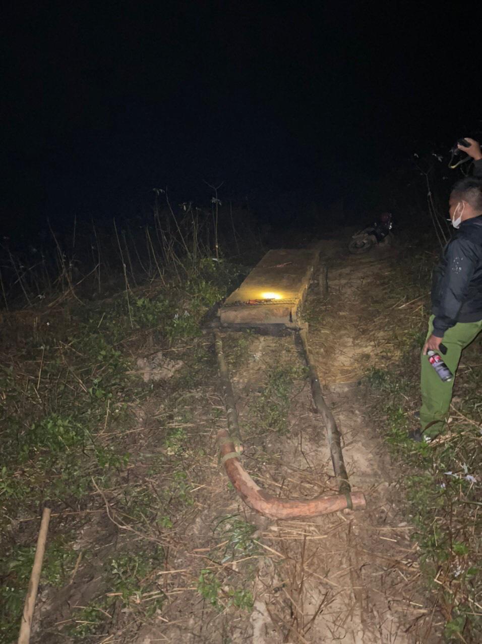 """Đắk Lắk: Thêm một vụ phá rừng quy mô lớn xảy ra ở """"điểm nóng"""" Krông Bông - Ảnh 1."""