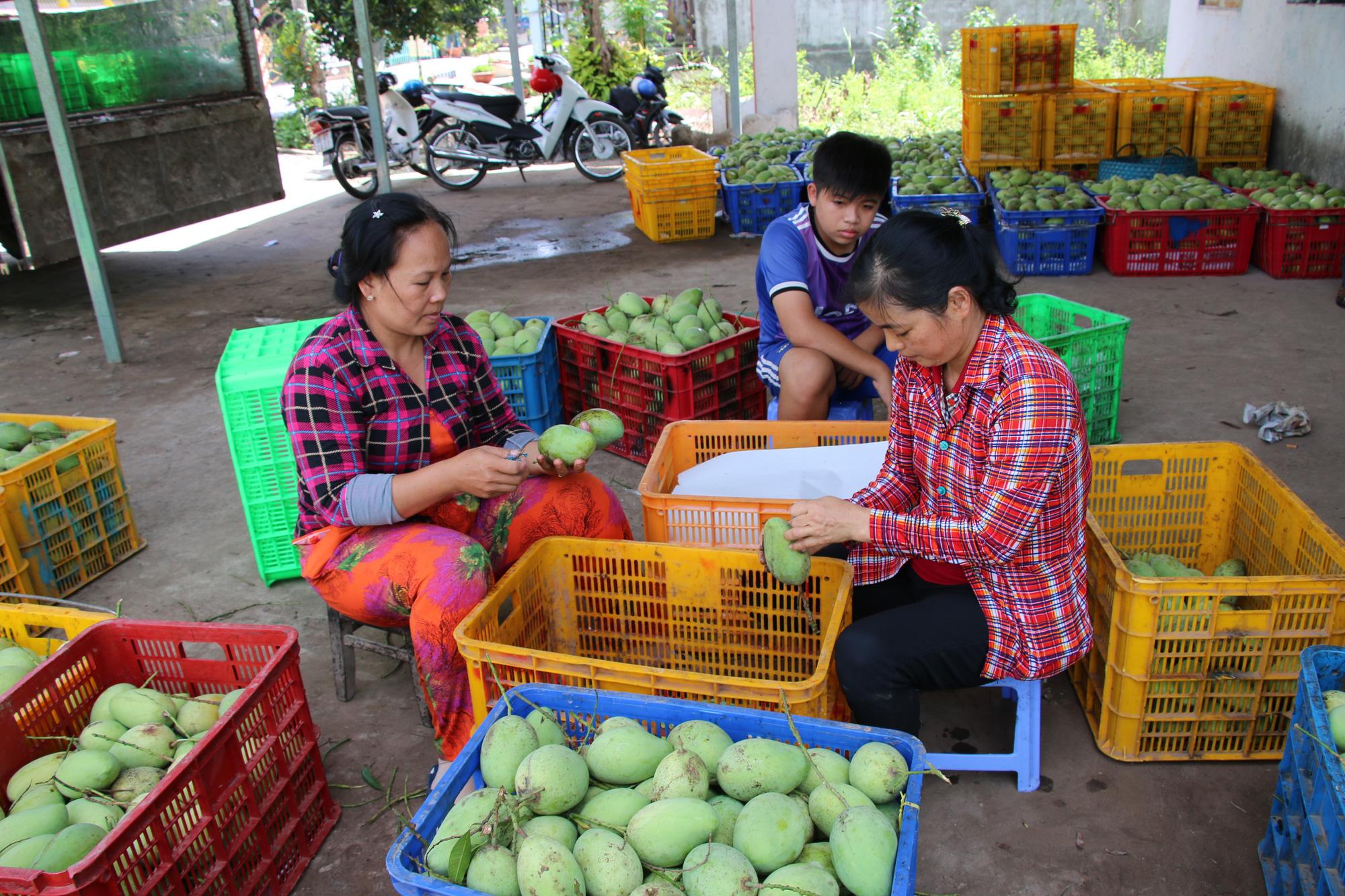 Bất ngờ 6 món ăn, thức uống của Đồng Tháp lọt vào tốp 100 đặc sản Việt Nam  - Ảnh 9.
