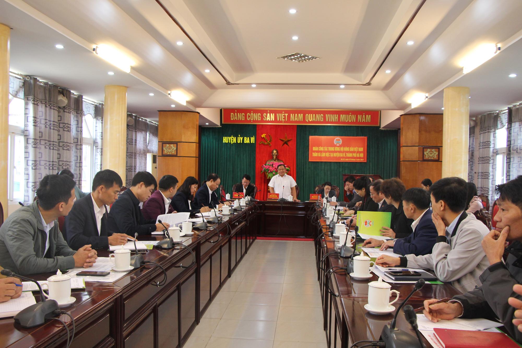 Phó Chủ tịch Hội Nông dân Việt Nam thăm nơi cả làng là người Dao làm nghề thuốc Nam - Ảnh 5.