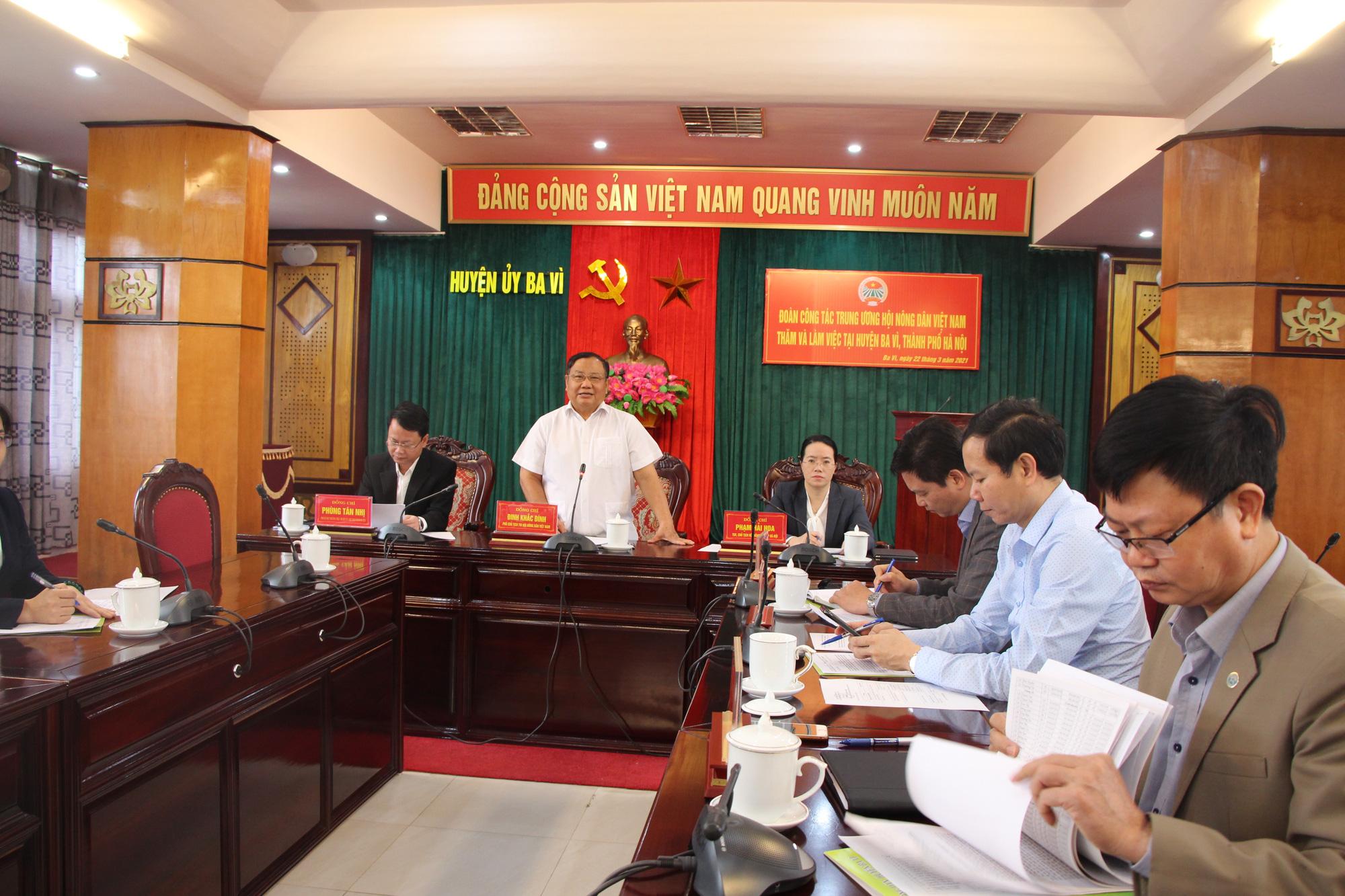 Phó Chủ tịch Hội Nông dân Việt Nam thăm nơi cả làng là người Dao làm nghề thuốc Nam - Ảnh 6.