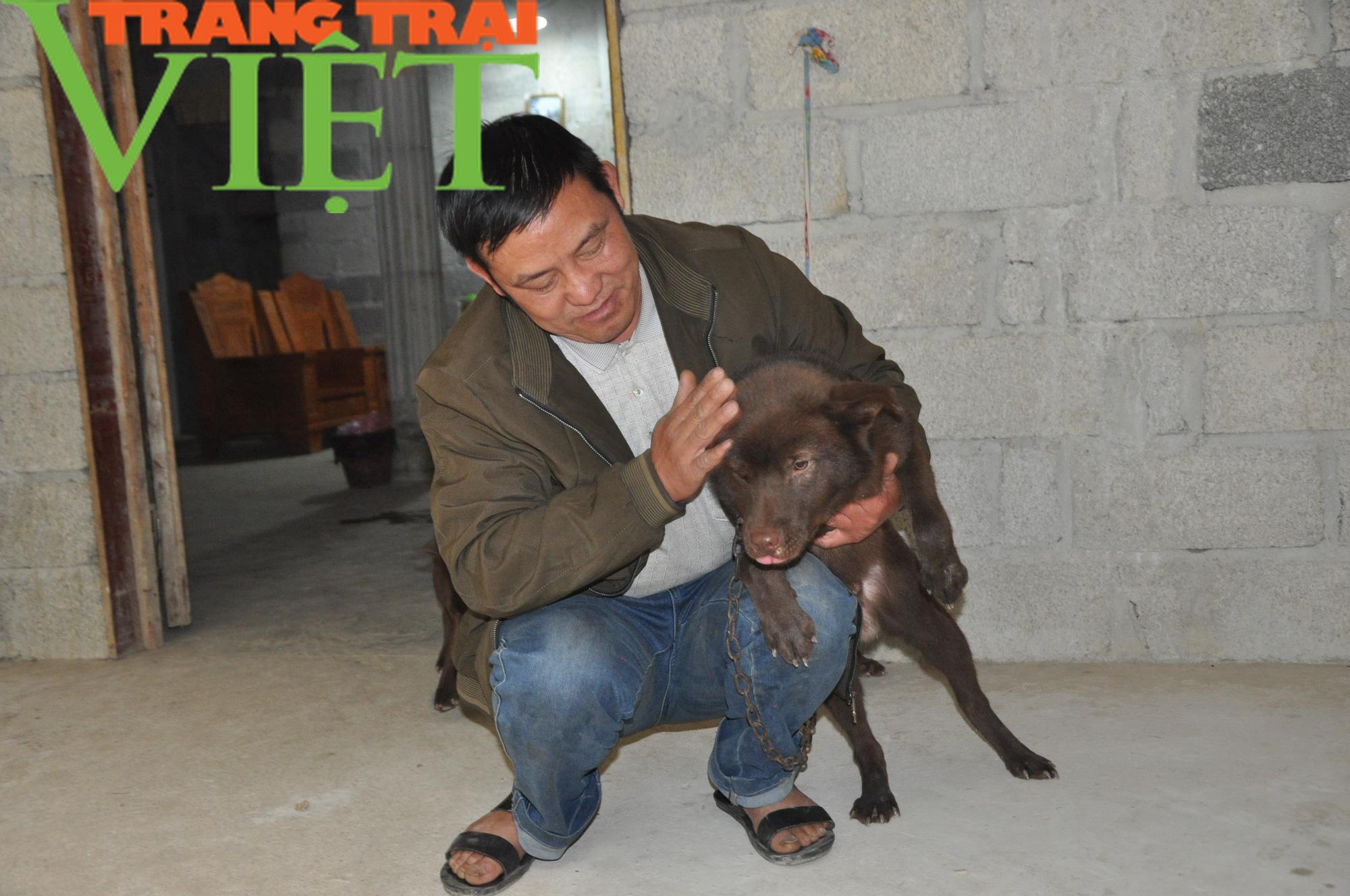 Chủ tịch Hội Nông dân Việt Nam gợi mở điều này giúp dân nuôi chó Mông Cộc ở Hà Giang làm giàu nhanh - Ảnh 1.
