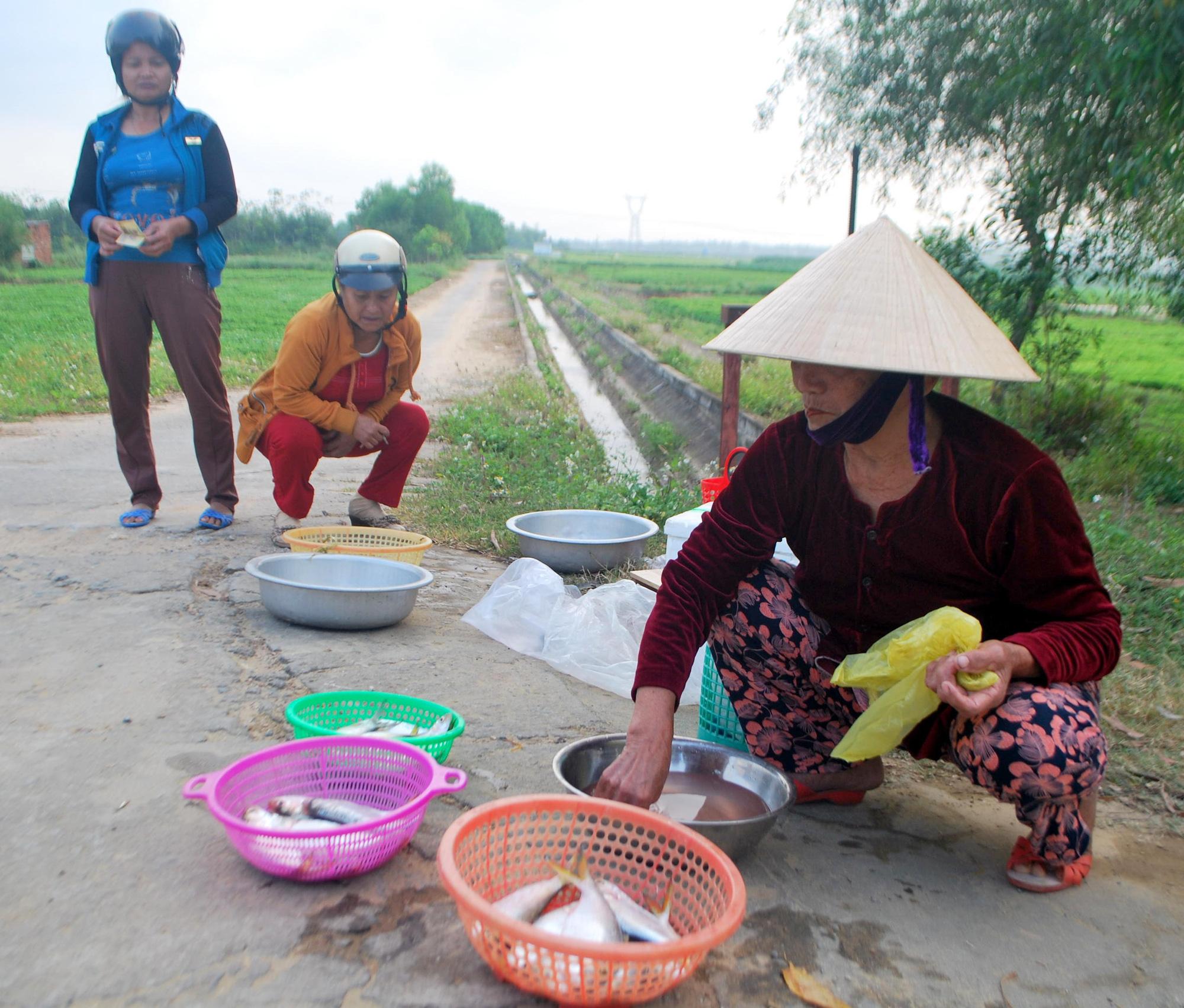 Kể chuyện làng: Tháng Giêng ăn cá mòi sông Yên - Ảnh 1.