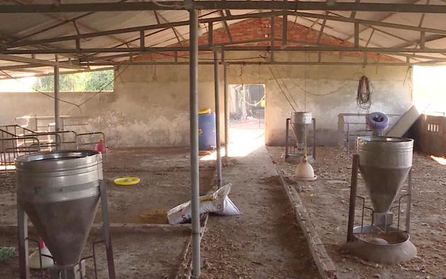Sau dịch tả heo châu Phi, chuồng trại của ông Triết bỏ trống đến nay