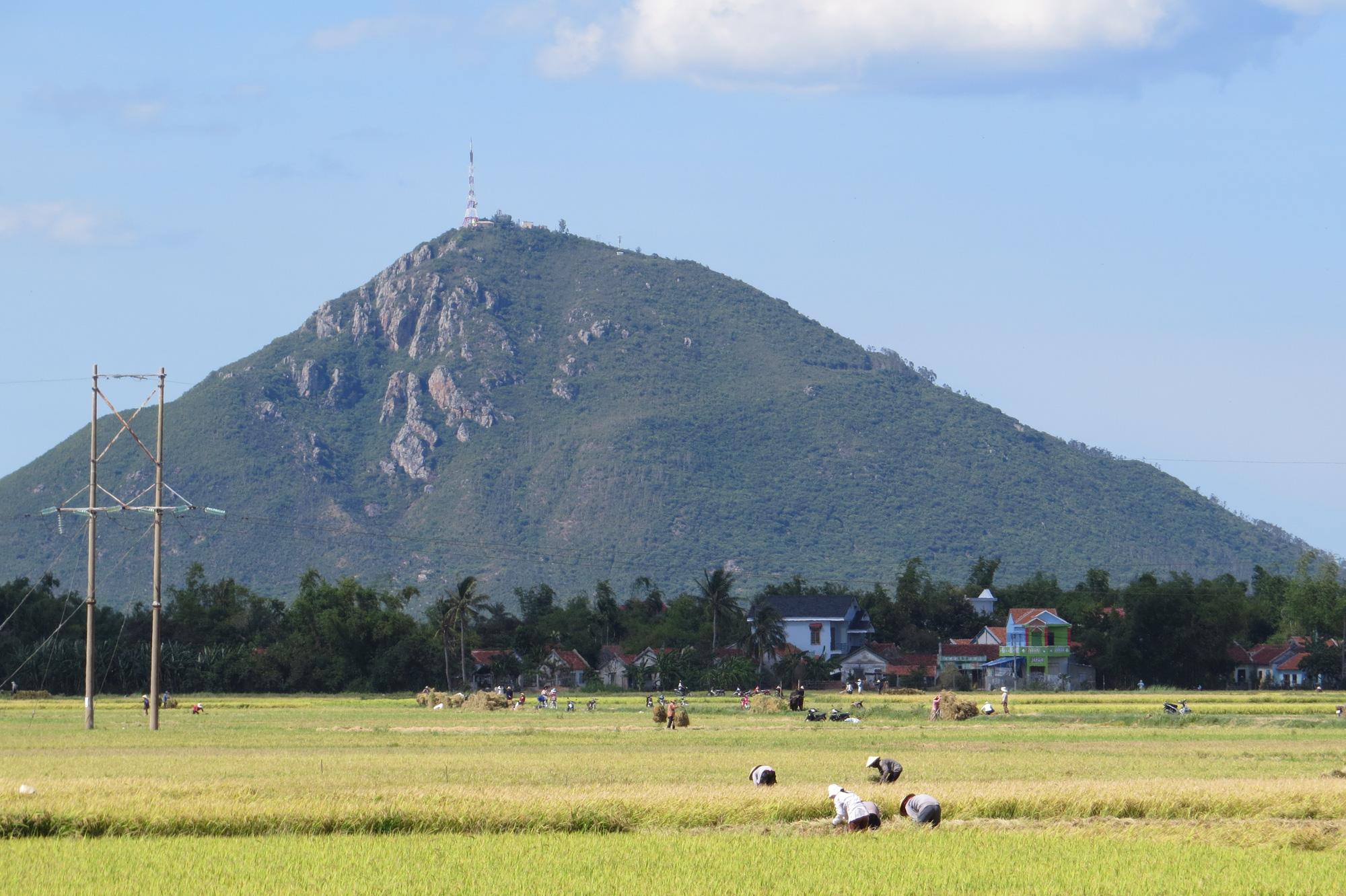 Phú Yên: Khuyến cáo thận trọng khi mua bán, sang nhượng đất ruộng - Ảnh 1.