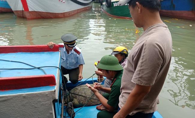 """Rùa biển """"quý hiếm"""" nặng 120kg bất ngờ dính lưới ngư phủ trên đầm Đề Gi - Ảnh 1."""