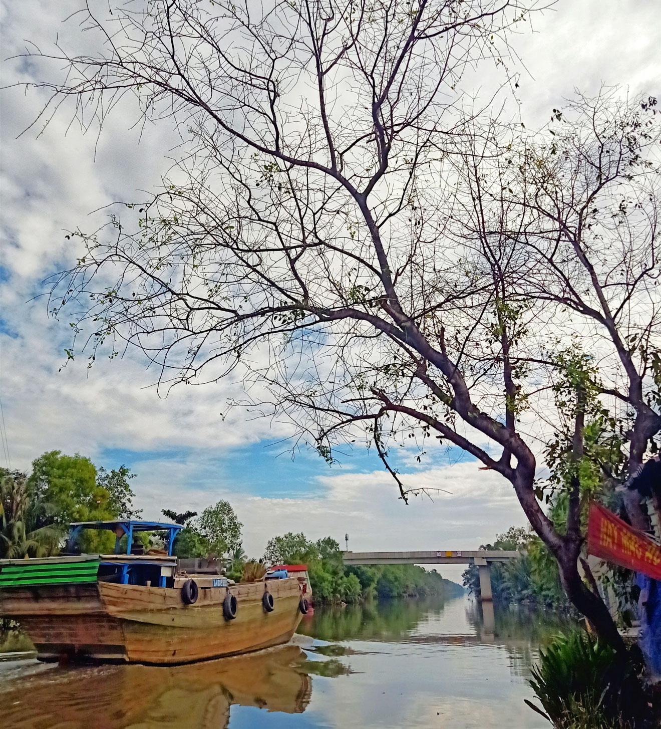 Long An: Những làng quê bỗng đẹp đến lạ kỳ qua những tấm hình chụp bằng điện thoại của lữ khách - Ảnh 5.