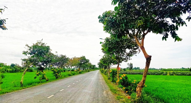 Long An: Những làng quê bỗng đẹp đến lạ kỳ qua những tấm hình chụp bằng điện thoại của lữ khách - Ảnh 6.