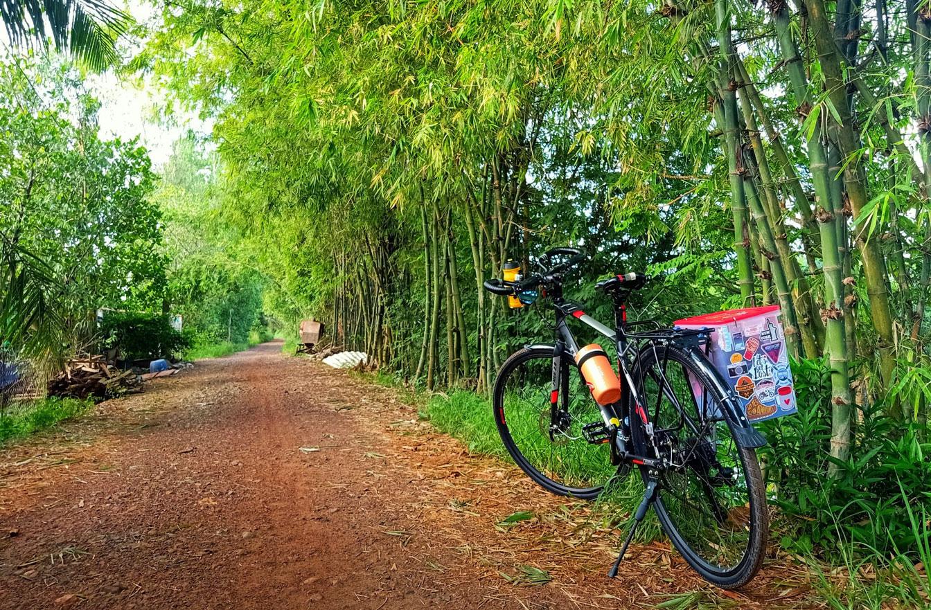 Long An: Những làng quê bỗng đẹp đến lạ kỳ qua những tấm hình chụp bằng điện thoại của lữ khách - Ảnh 2.
