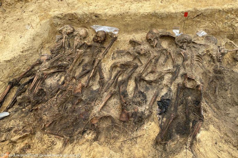 Ngôi mộ tập thể từ thời Đức Quốc xã với hơn 25 bộ xương được phát hiện sâu trong rừng - Ảnh 1.