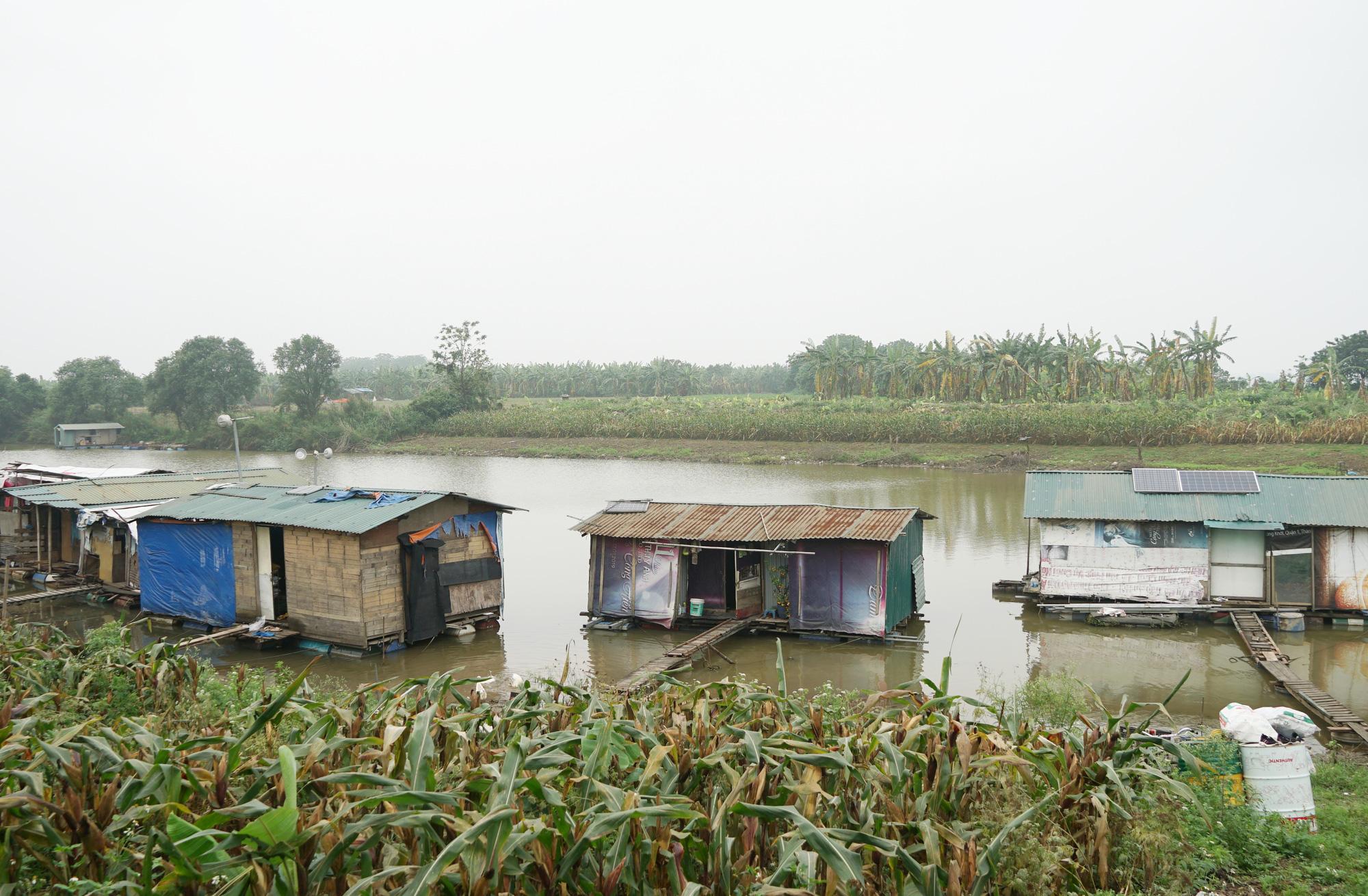 Cuộc sống cùng cực của người dân xóm chài Hà Nội và nỗi lo quy hoạch - Ảnh 7.