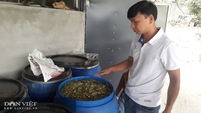 Thái Nguyên: Bỏ công tác đoàn về chăn nuôi đủ thứ, thanh niên trẻ kiếm đều tay mỗi tháng vài chục triệu đồng - Ảnh 4.