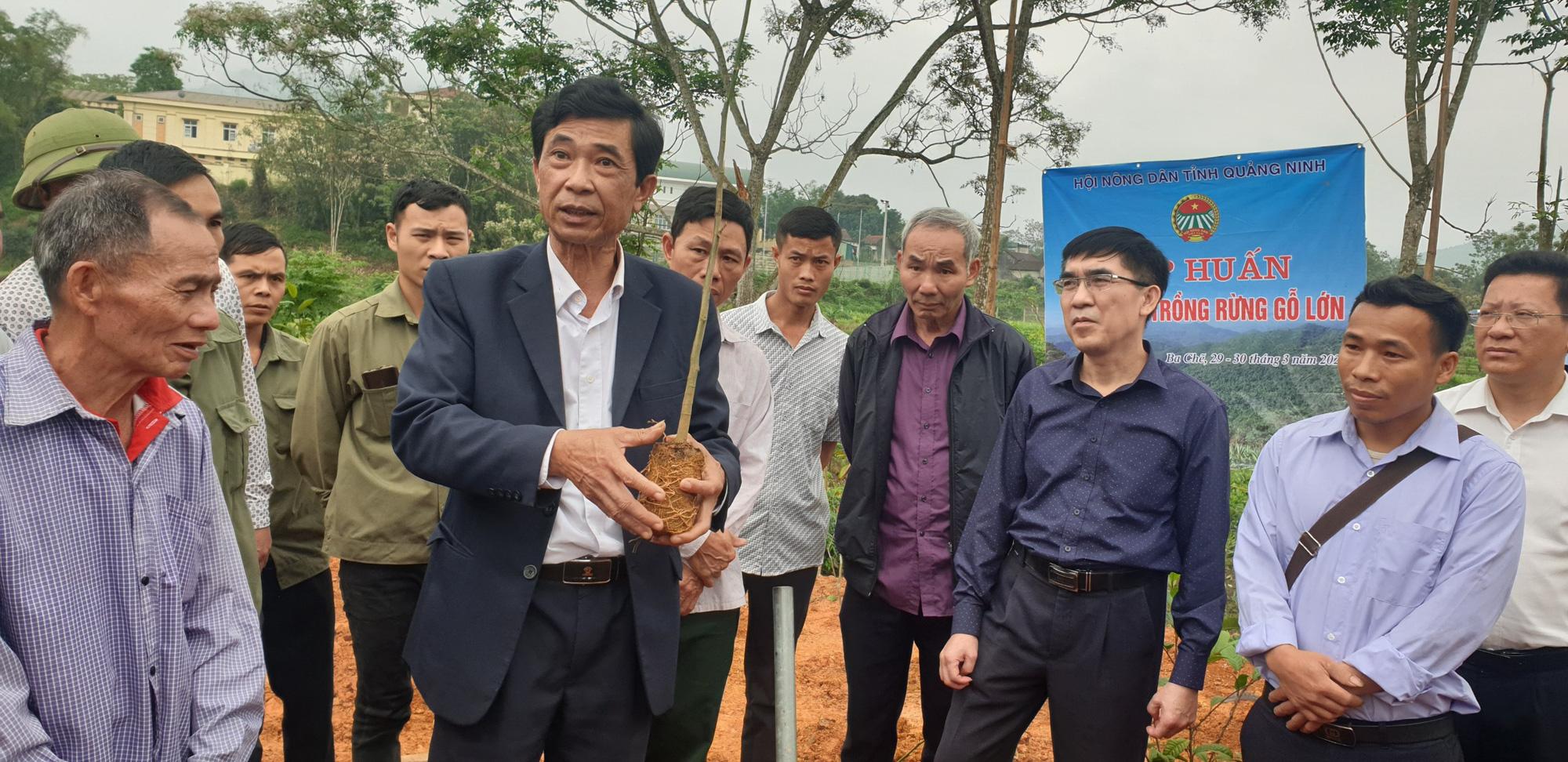 Hội Nông dân tỉnh Quảng Ninh chung tay giúp Đồn Đạc xây dựng nông thôn mới - Ảnh 4.