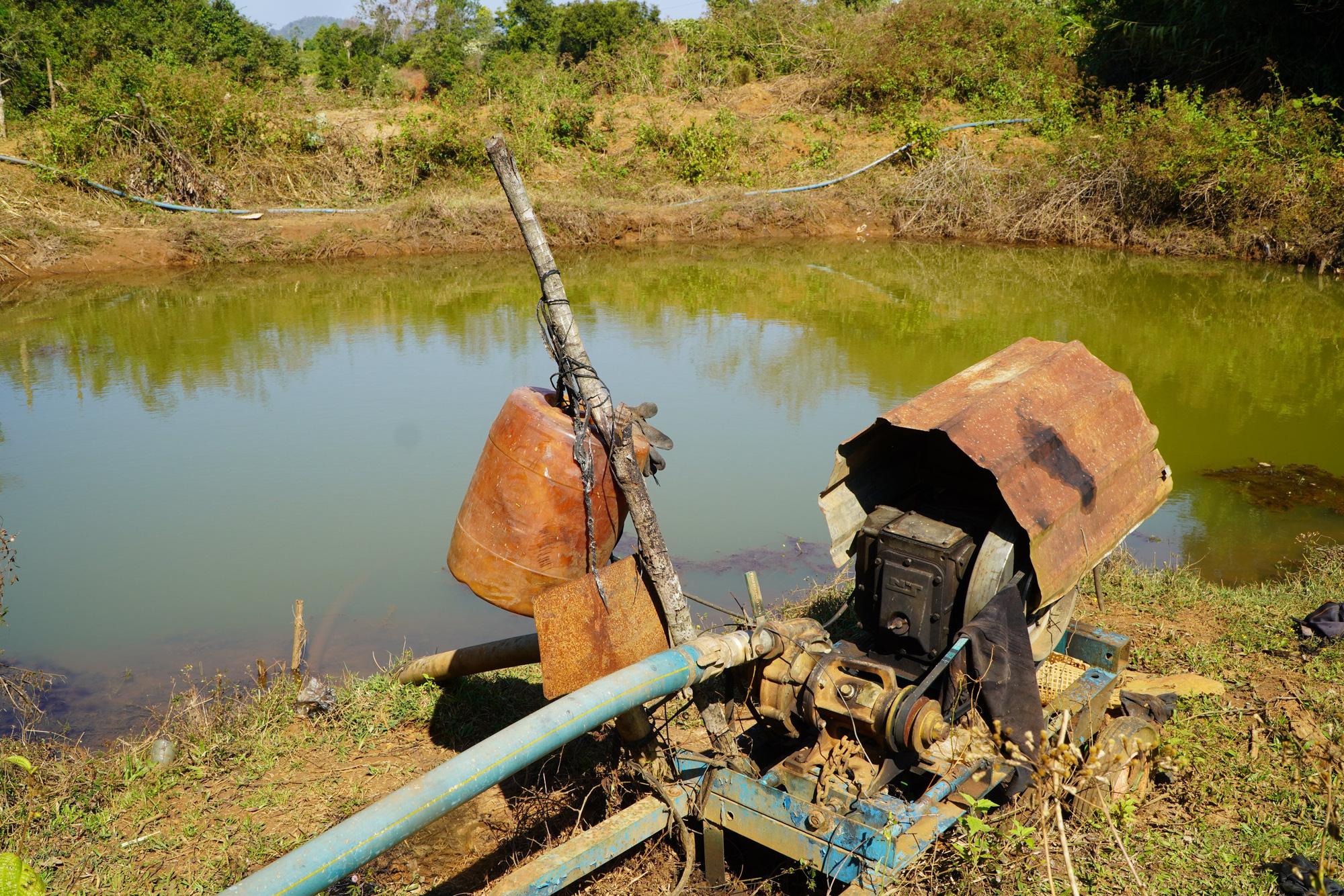 Nông dân Gia Lai hối hả đưa máy móc tưới cho cà phê sai quả - Ảnh 4.