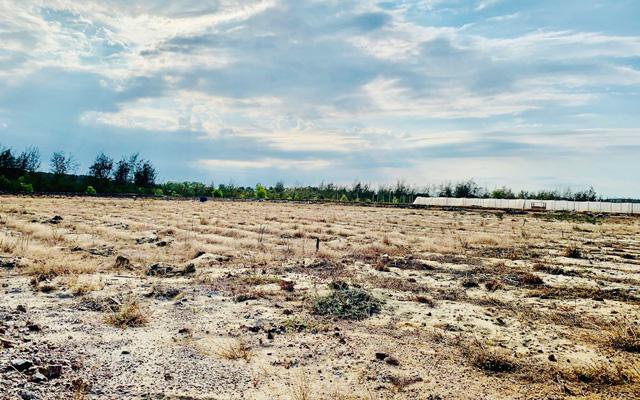 """Quảng Ngãi: Dự án đầu tư nông nghiệp """"bong bóng"""" bị xẹp hơi?  - Ảnh 3."""