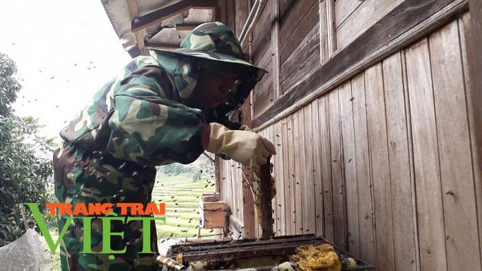 """Điện Biên: Thuần dưỡng """"lộc rừng"""" nông dân Chà Nưa thu tiền tỷ mỗi năm - Ảnh 5."""