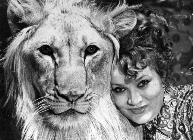 Câu chuyện vừa cảm động vừa đáng sợ về gia đình duy nhất trên thế giới nuôi sư tử như thú cưng trong nhà - Ảnh 10.