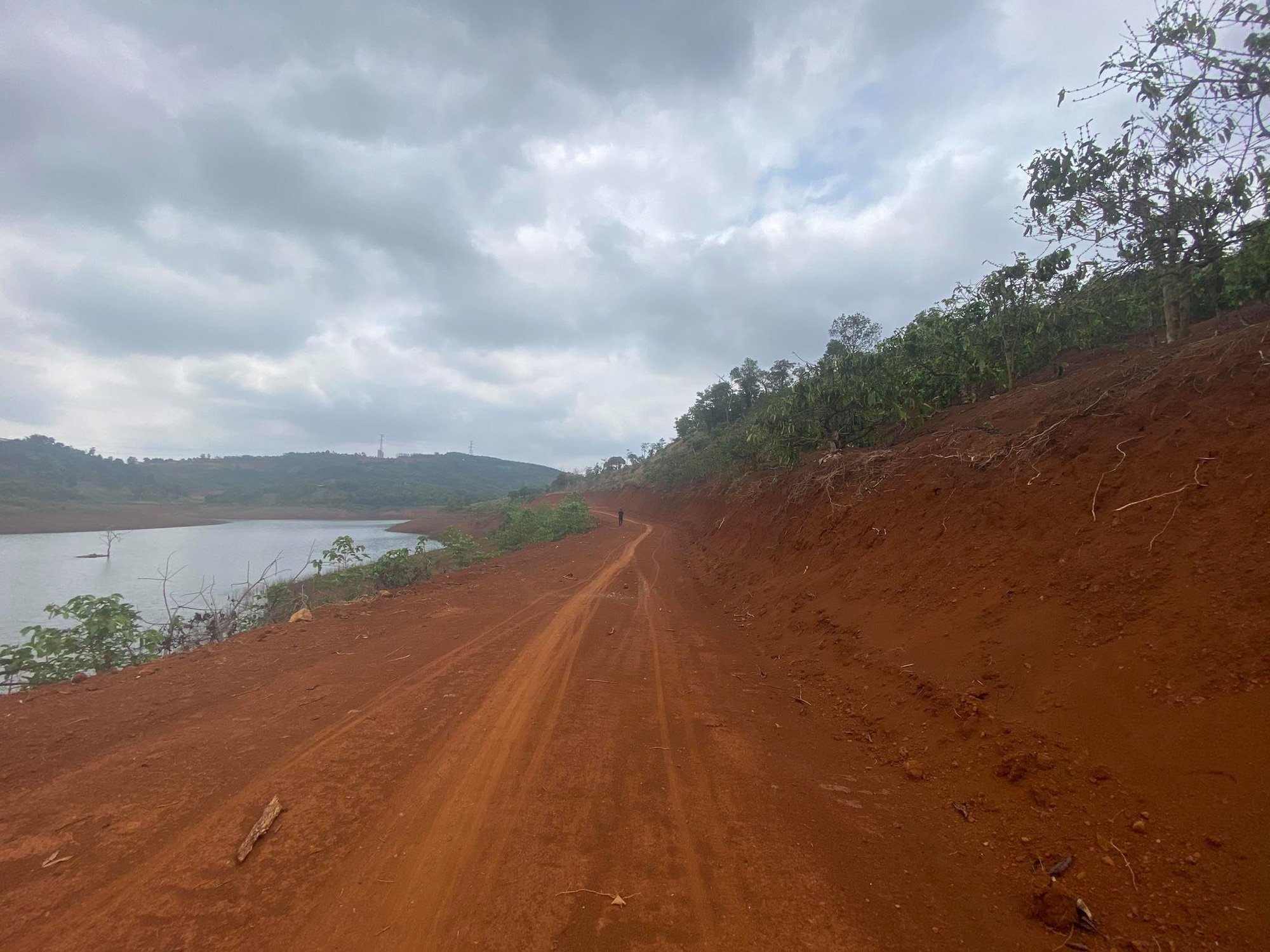 Đắk Nông: Ngang nhiên mở đường, hủy hoại rừng phòng hộ bán ngập ngay Thành phố Gia Nghĩa - Ảnh 1.