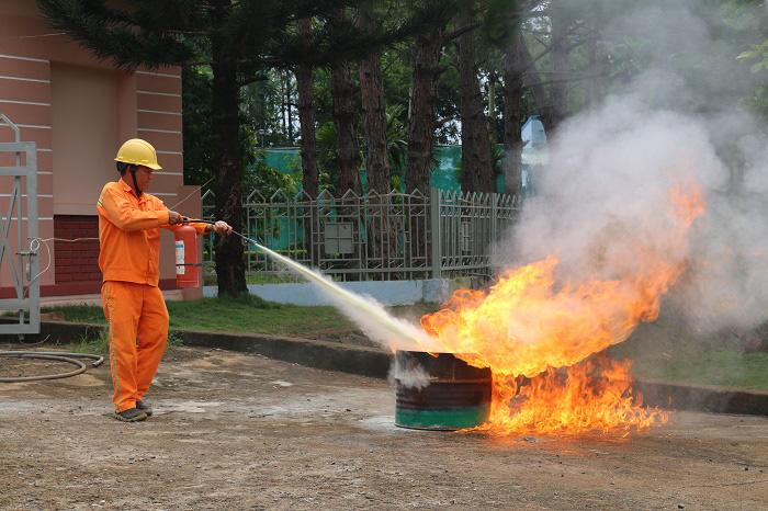 PC Đắk Nông: Tăng cường phòng cháy, chữa cháy, vận hành lưới điện an toàn - Ảnh 2.