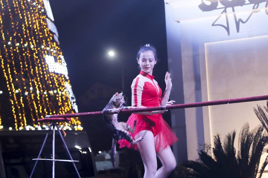 """""""Danko Square – Sắc màu lễ hội Châu Âu"""" rực rỡ chào hè với tinh hoa nghệ thuật xiếc Việt - Ảnh 2."""