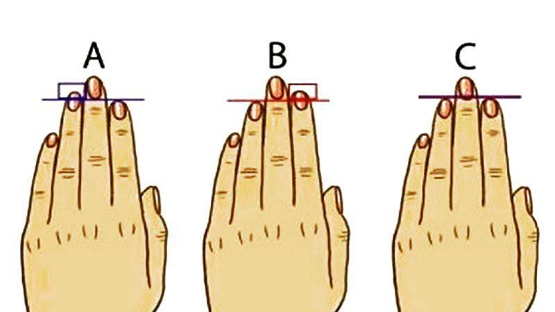 Dự đoán tương lai khi nhìn vào ngón tay đeo nhẫn của bạn  - Ảnh 1.