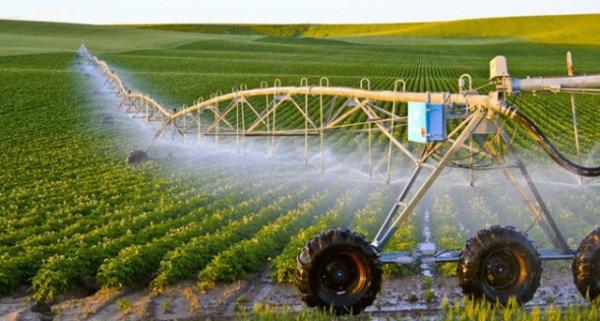 Điều kiện thuê đất nông nghiệp theo Luật mới - Ảnh 1.