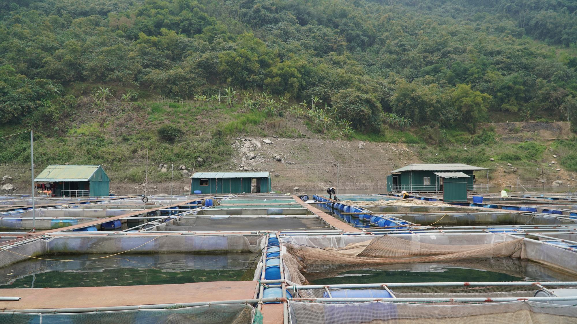 Sử dụng đến 9 tỷ mét khối nước nuôi cá, nông dân Hòa Bình trúng lớn - Ảnh 5.