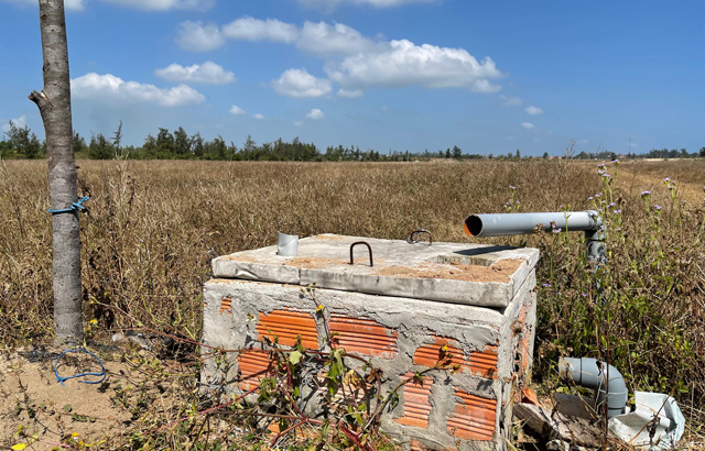 Quảng Ngãi: Dặt dẹo, hoang tàn những dự án đầu tư nông nghiệp  - Ảnh 1.