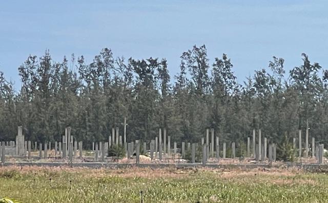 Quảng Ngãi: Dặt dẹo, hoang tàn những dự án đầu tư nông nghiệp  - Ảnh 4.