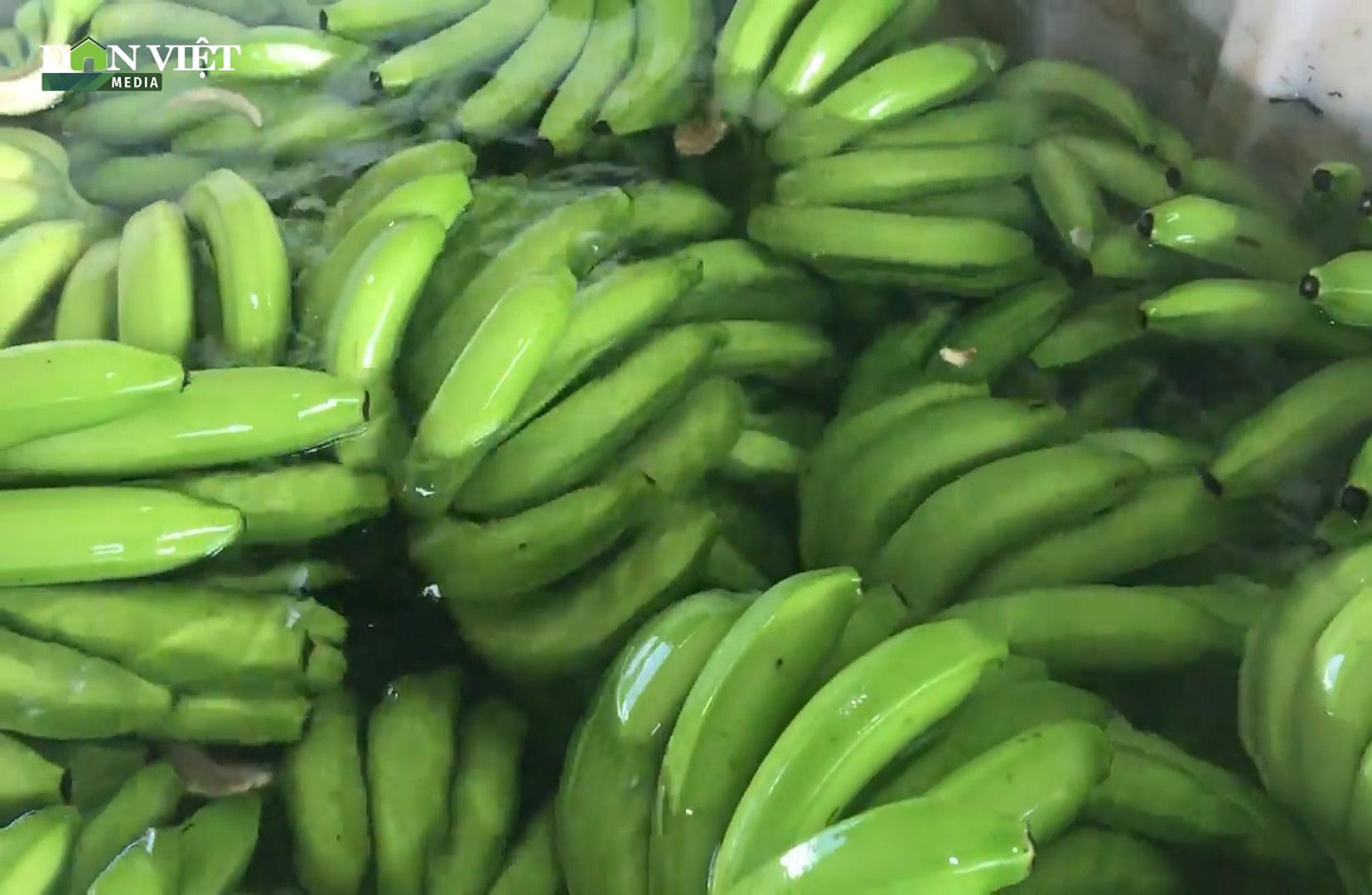 Chuối Việt Nam nhập khẩu vào EU giảm mạnh nhưng giá lại cao ngất ngưởng - Ảnh 1.