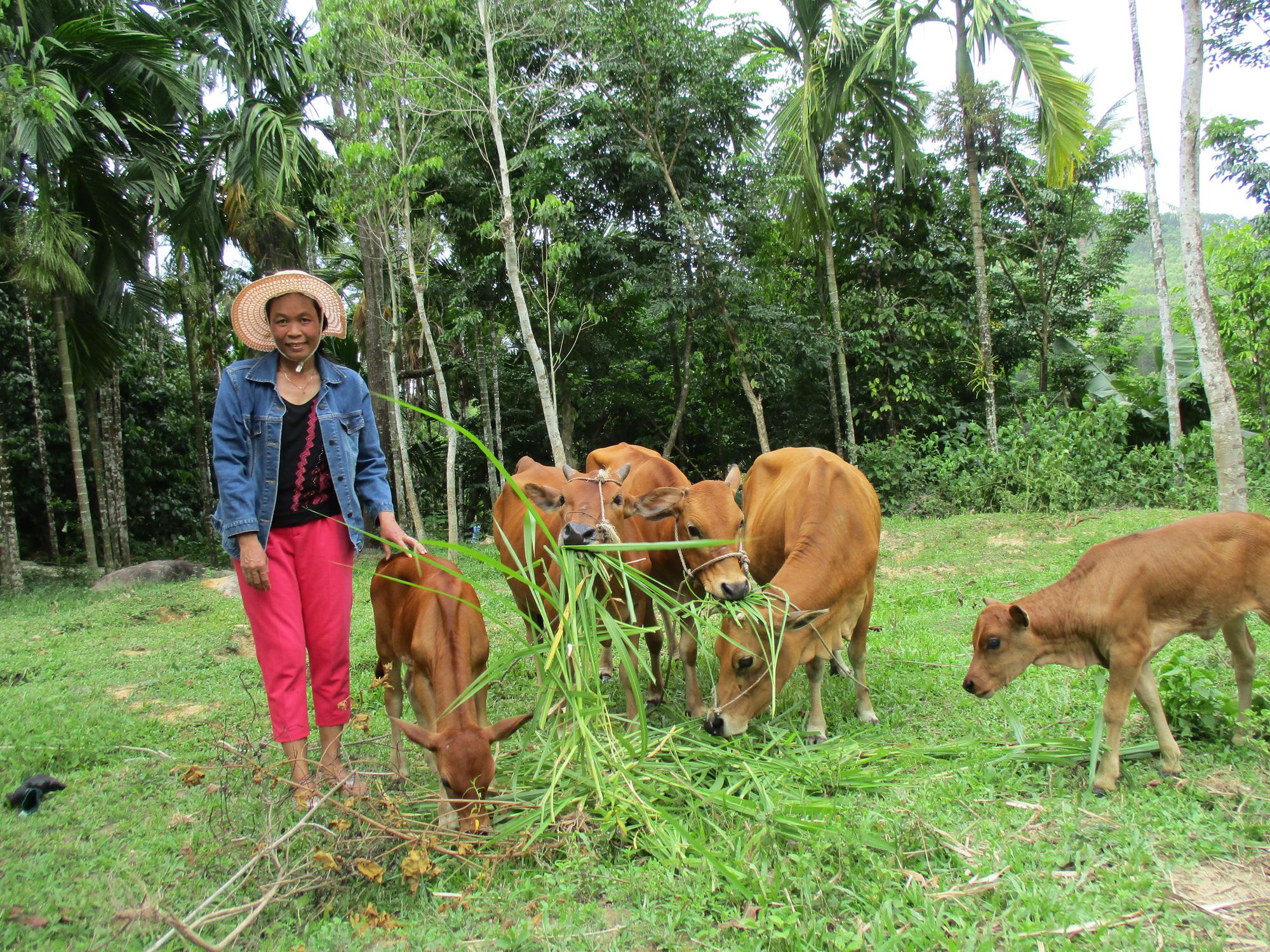 Quảng Nam: Tiên Mỹ đạt chuẩn Nông thôn mới, người dân thu nhập tăng gấp 3 lần  - Ảnh 3.