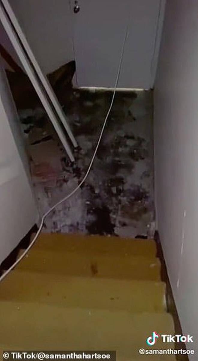 Vừa thuê nhà mới, cô gái gỡ tấm gương phòng tắm ra kiểm tra thì phát hiện lỗ hổng bí mật và cảnh tượng hãi hùng như phim kinh dị - Ảnh 2.