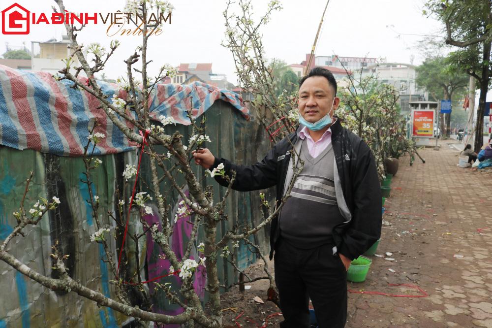 Người dân Hà Nội chen chân mua loài hoa trắng tinh khôi trưng nhà níu giữ sắc xuân - Ảnh 6.
