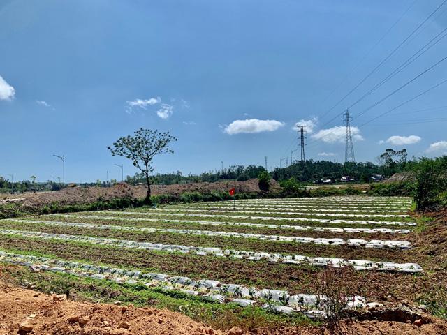 Quảng Ngãi: Huyện ra tối hậu thư cho hộ chây ì giao đất dự án kè bắc Trà Bồng  - Ảnh 2.