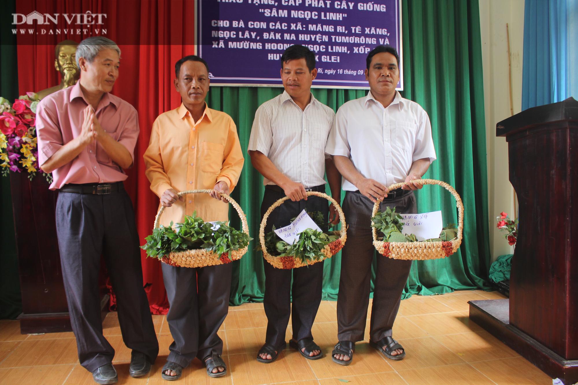 Kon Tum: Khuyến khích nông dân trồng và phát triển cây triệu đô - Ảnh 6.
