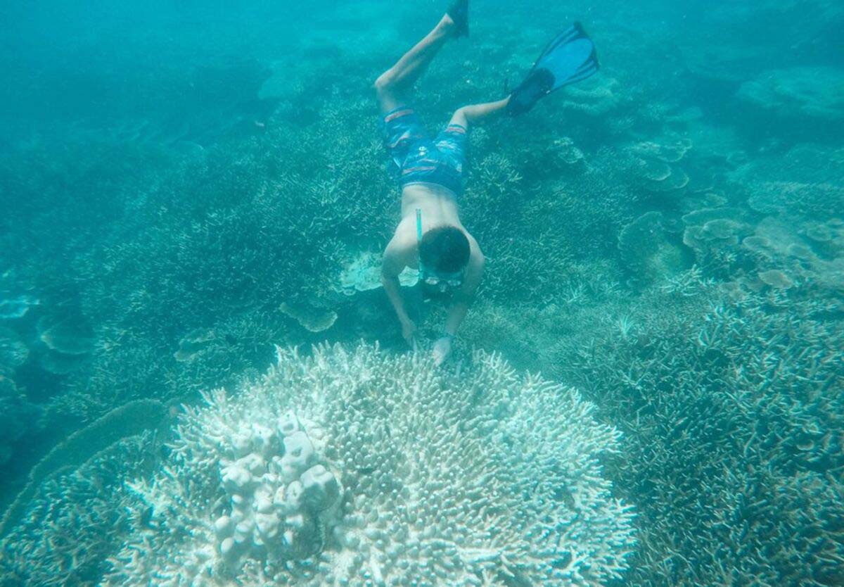 Du lịch Côn Đảo: Tất tần tật thông tin về Côn Đảo bạn không nên bỏ qua - Ảnh 5.