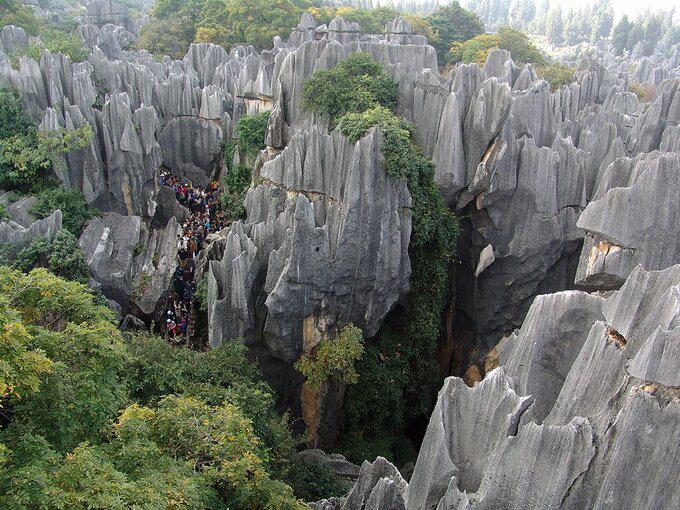 Lạc vào mê cung rừng đá 270 triệu năm tuổi - Ảnh 5.