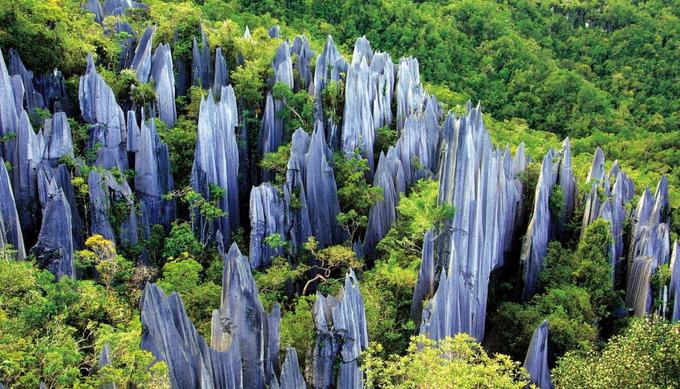 Lạc vào mê cung rừng đá 270 triệu năm tuổi - Ảnh 6.