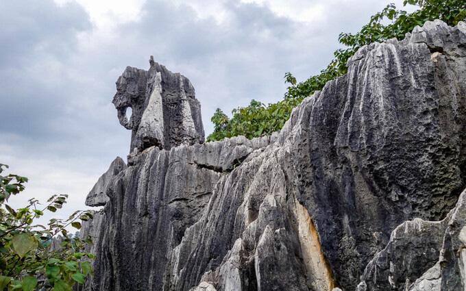 Lạc vào mê cung rừng đá 270 triệu năm tuổi - Ảnh 7.