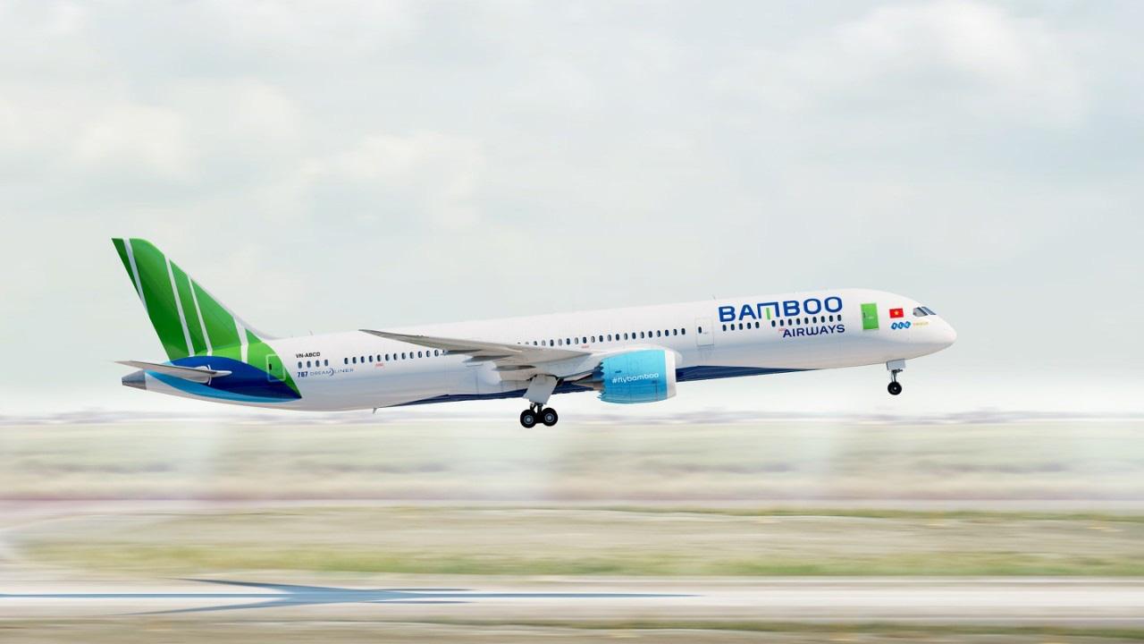 Các hãng hàng không đồng loạt đề xuất Chính phủ cho vay hàng nghìn tỷ - Ảnh 1.