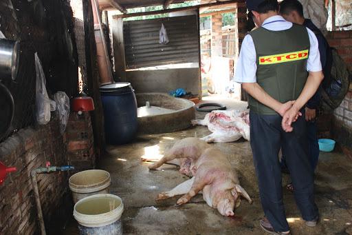Bộ NNPTNT đề nghị công khai các cơ sở giết mổ lợn bệnh, lợn chết - Ảnh 1.