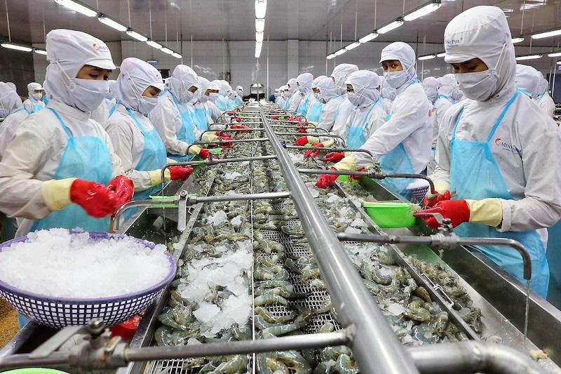 Loạt nhà máy chế biến tôm hàng trăm tỷ đồng được khánh thành - Ảnh 1.