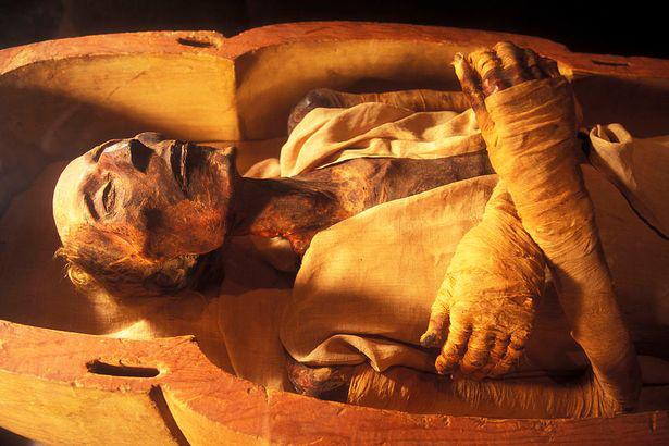 Sự cố kênh đào Suez có phải do một lời nguyền Pharaoh cổ đại? - Ảnh 4.