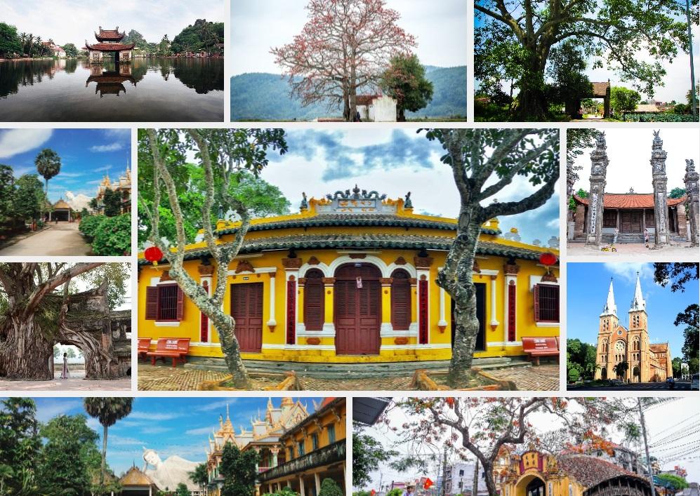Báo điện tử Dân Việt ra mắt chuyên mục: Tâm hồn làng Việt - Ảnh 1.