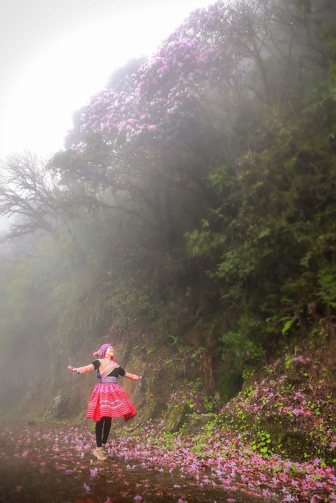 Cao Bằng: Mê mẩn sắc hoa Đỗ quyên cổ thụ rực rỡ trên đỉnh Phia Oắc - Ảnh 5.