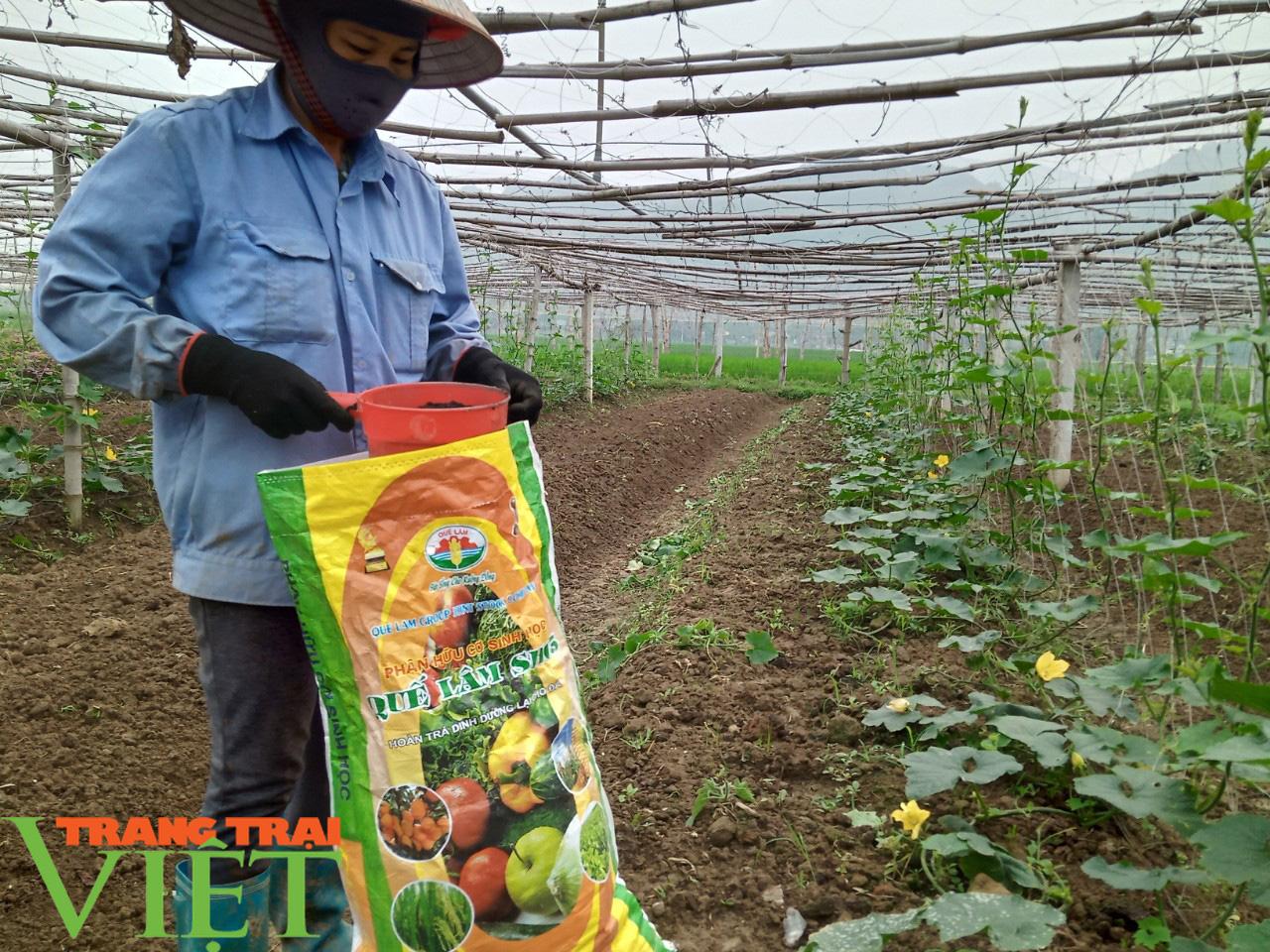 HTX Nông nghiệp Mường Tấc sản xuất nông nghiệp theo hướng hữu cơ - Ảnh 4.