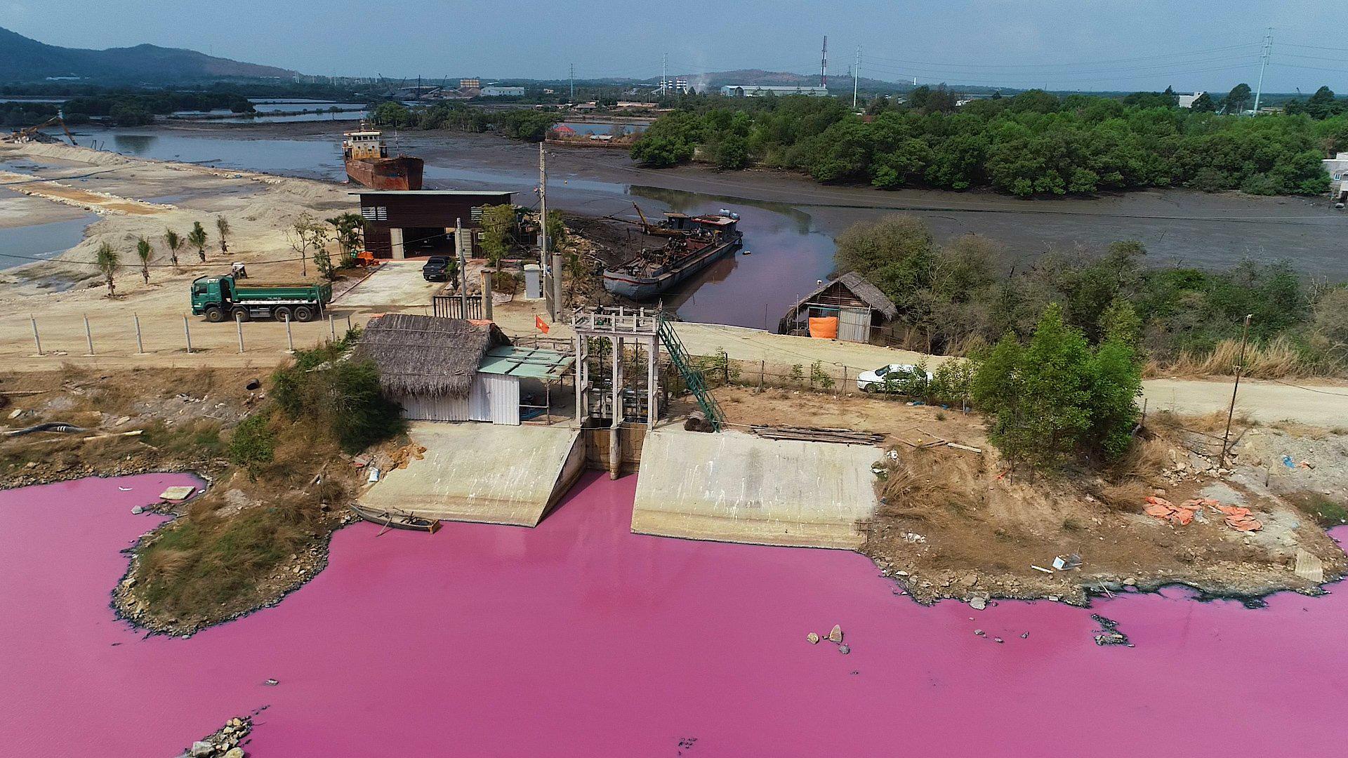 CLIP: Kinh hoàng hồ nước rộng lớn chuyển thành màu tím - Ảnh 4.