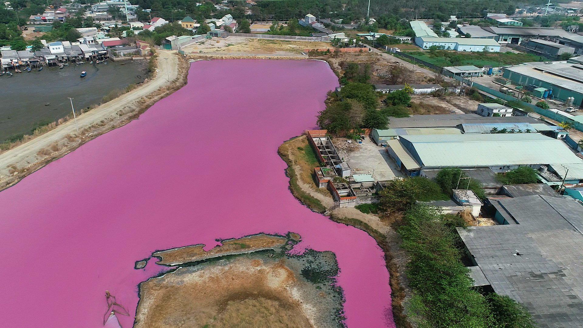 CLIP: Kinh hoàng hồ nước rộng lớn chuyển thành màu tím - Ảnh 1.